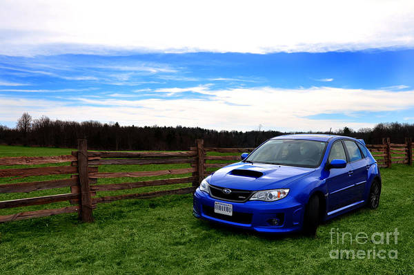 Wrx Photograph - Sitting Along The Fence by Eric Liller