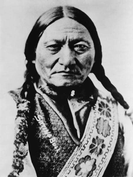 Sitting Bull Photograph - Sitting Bull 1831-1890 Lakota Sioux by Everett