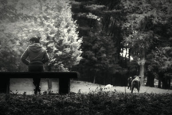Photograph - Sitting On The Bench by Roberto Pagani