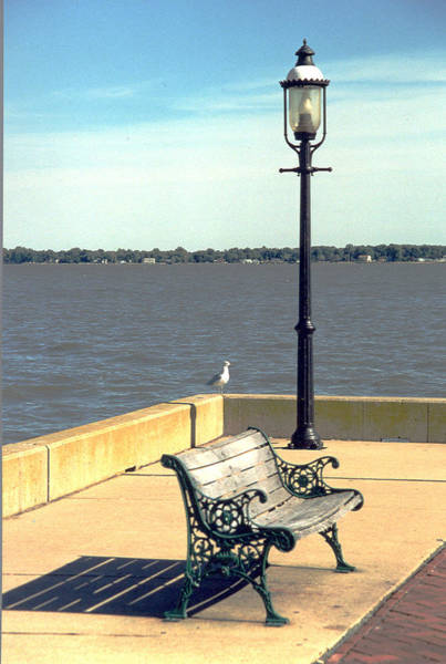 Sitting On The Delaware Art Print