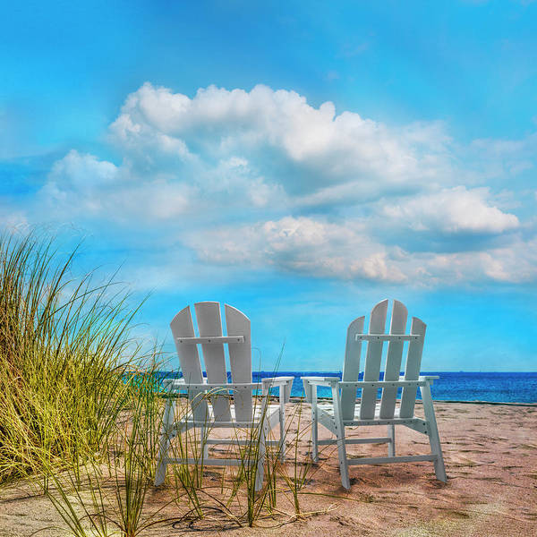 Photograph - Sitting Pretty In Blues by Debra and Dave Vanderlaan
