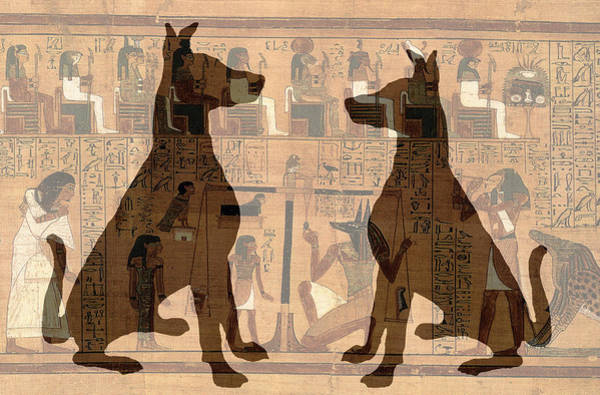 Digital Art - Sitting Proud Dogs And Ancient Egypt by Karla Beatty