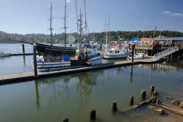 Photograph - Siuslaw Marina by Margaret Pitcher