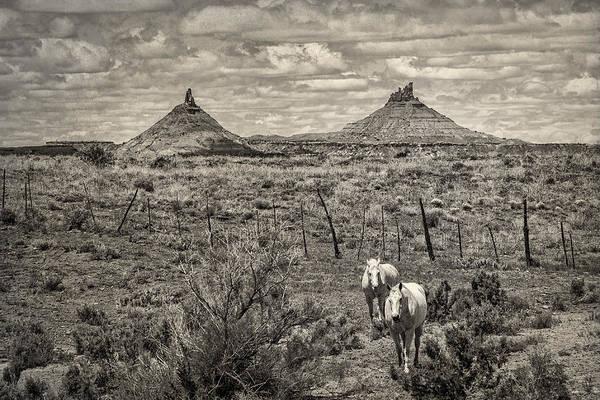 Photograph - Six-shooter Peaks by Lou  Novick