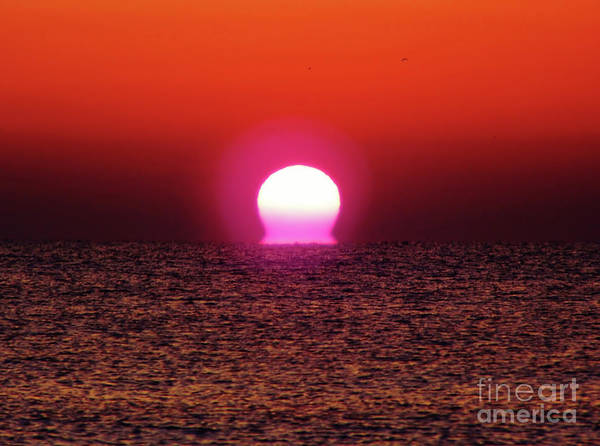 Photograph - Sizzling Sunrise by D Hackett