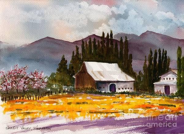 Skagit Valley Painting - Skagit Valley Daffodils by Carolyn Curtice