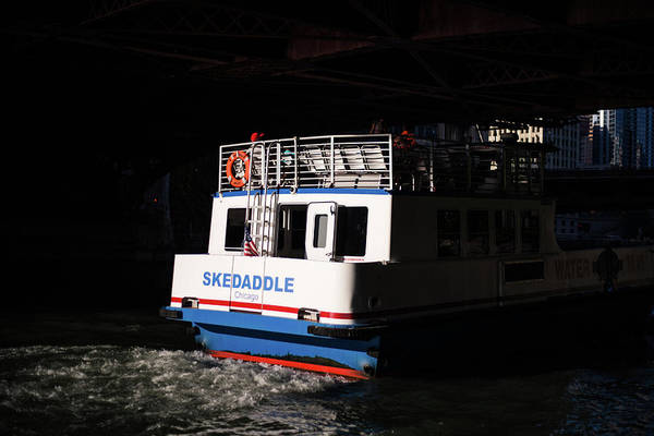 Photograph - Skedaddle by Sue Conwell