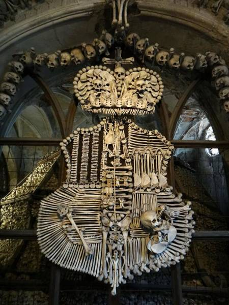 Charnel Photograph - Coat Of Arms, And Legs by Two Small Potatoes