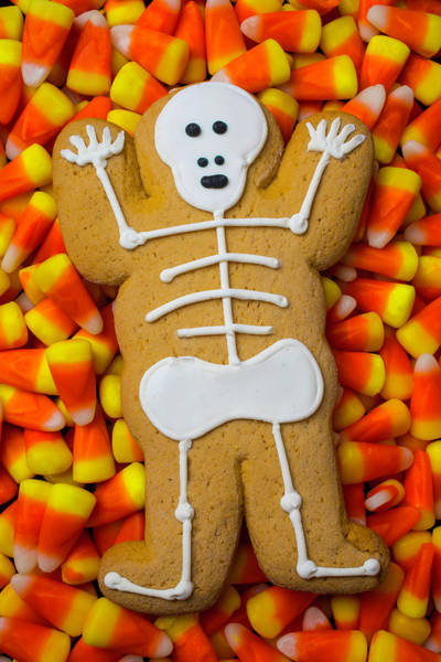 Wall Art - Photograph - Skeleton Gingerbreadman Cookie by Garry Gay