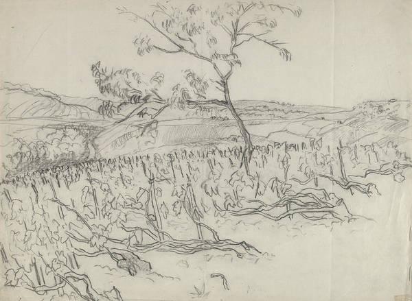 Outdoors Digital Art - Sketch Of Vineyard by Carl Oscar August Erickson