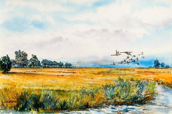 Skidaway Flyway Art Print