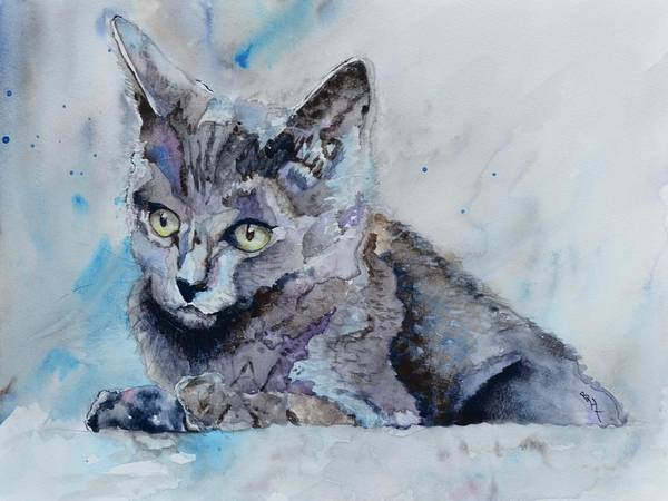 Painting - Skitty by Beverley Harper Tinsley