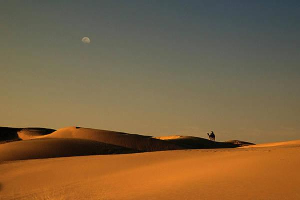 Wall Art - Photograph - Skn 1117 Camel Ride At 6 by Sunil Kapadia