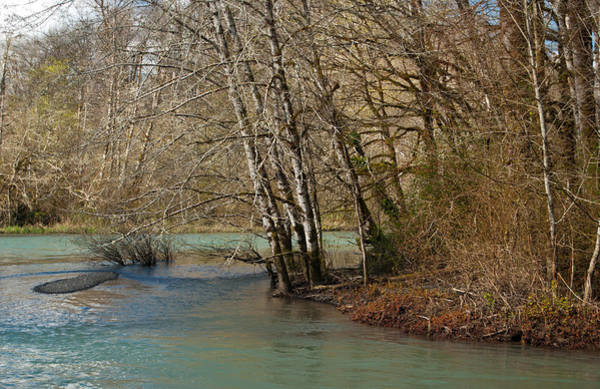 Photograph - Skokomish River - Around The Bend by Jani Freimann