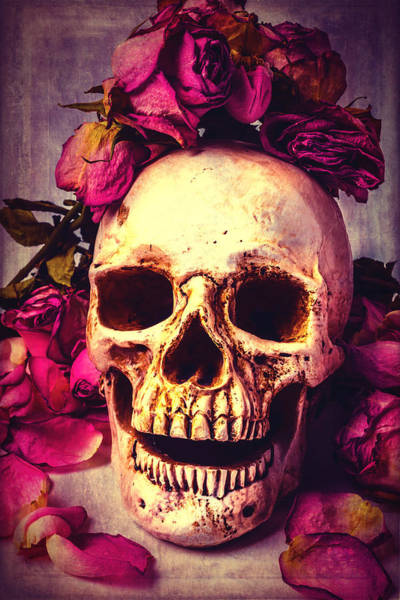 Wall Art - Photograph - Skull And Roses by Garry Gay