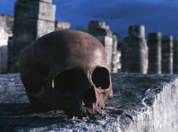 Chichen Itza Photograph - Skull At Chichen Itza by The Harrington Collection