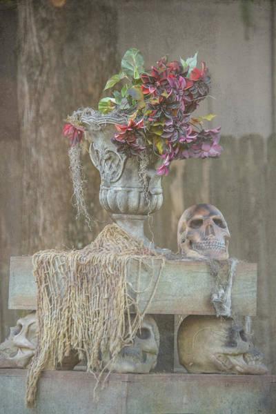 Wall Art - Photograph - Skull Centerpiece by Pamela Williams