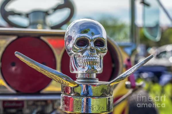 Photograph - Skull Ornament by Tony Baca