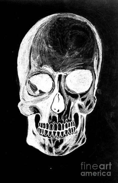 Drawing - Skull Study 3 by Reed Novotny