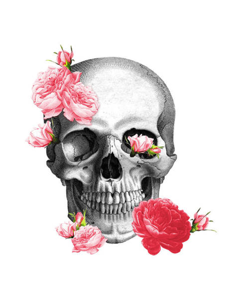 Anatomy Digital Art - Skull With Pink Roses Framed Art Print by Madame Memento