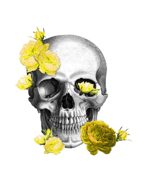 Anatomy Digital Art - Skull Yellow Roses by Madame Memento