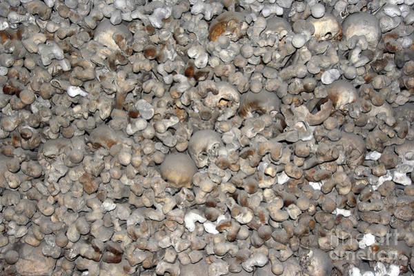 Wall Art - Photograph - Skulls And Bones by Michal Boubin