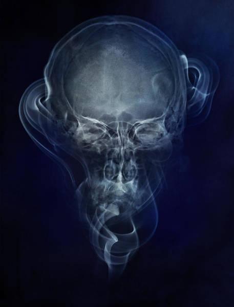 Photograph - Skulls And Smokes - Blue Version by Jaroslaw Blaminsky