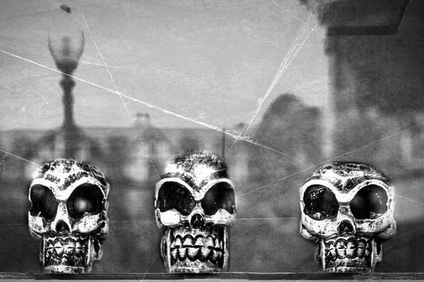 Photograph - Skulls In A Window by Stuart Litoff