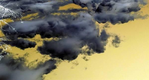 Photograph - White Tree Black Clouds by Richard Yates