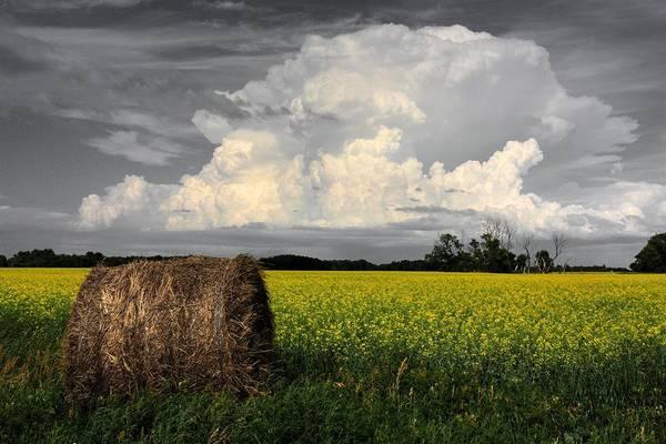 Photograph - Sky Bale by David Matthews