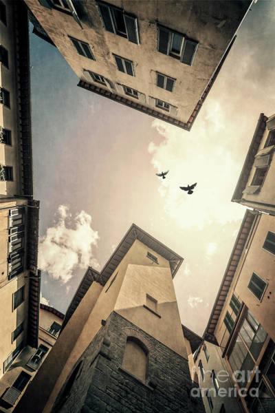 Wall Art - Photograph - Sky Is High by Evelina Kremsdorf
