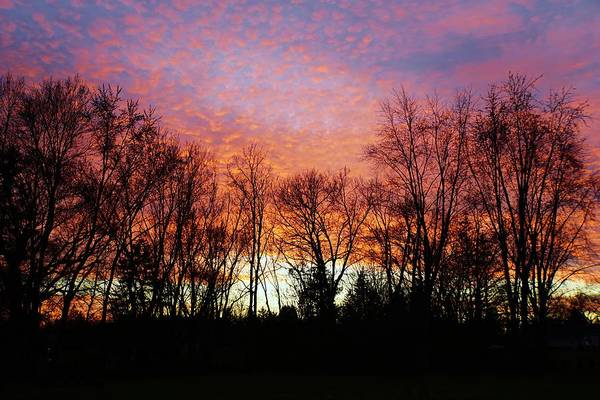 Wall Art - Photograph - Sky Of Fire by Red Cross