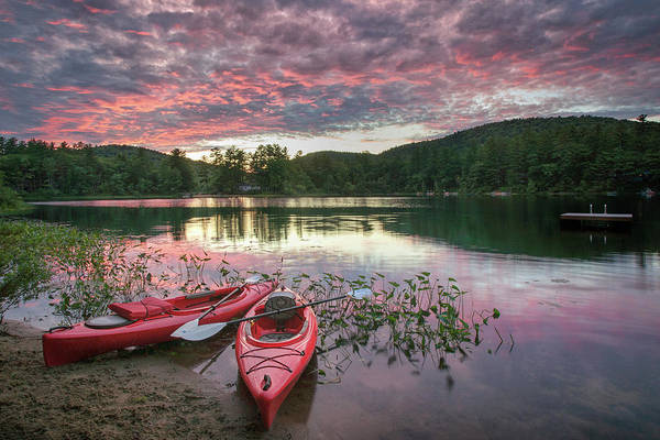 Photograph - Sky Of Pink by Darylann Leonard Photography