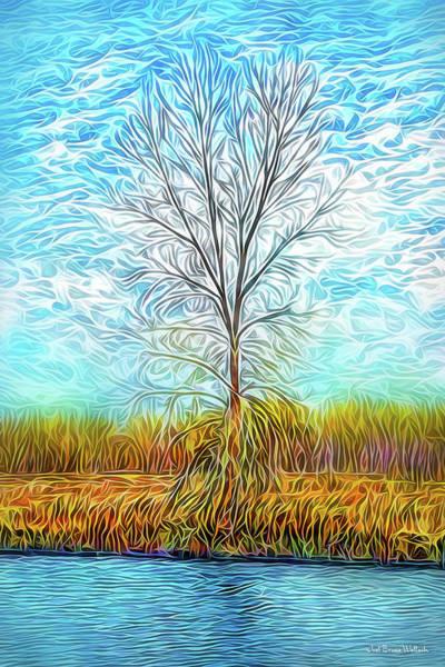 Digital Art - Sky Tree Fusion by Joel Bruce Wallach