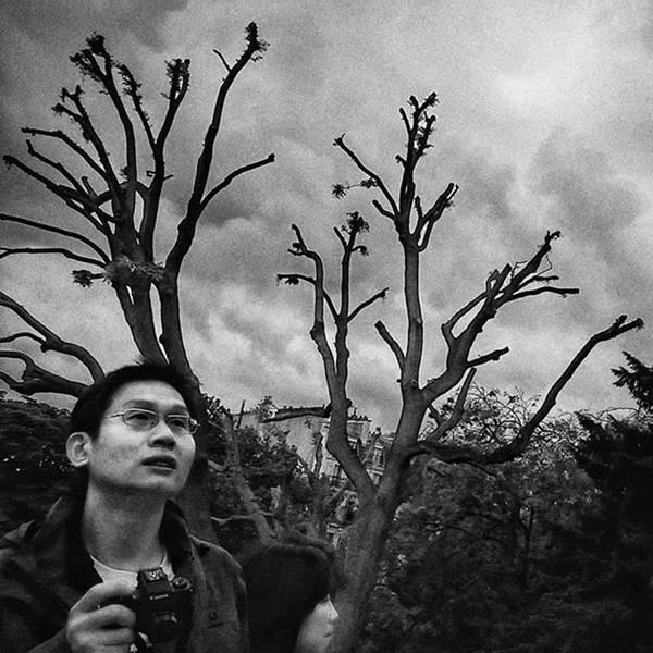 Wall Art - Photograph - #sky #tree #tourist #people by Rafa Rivas