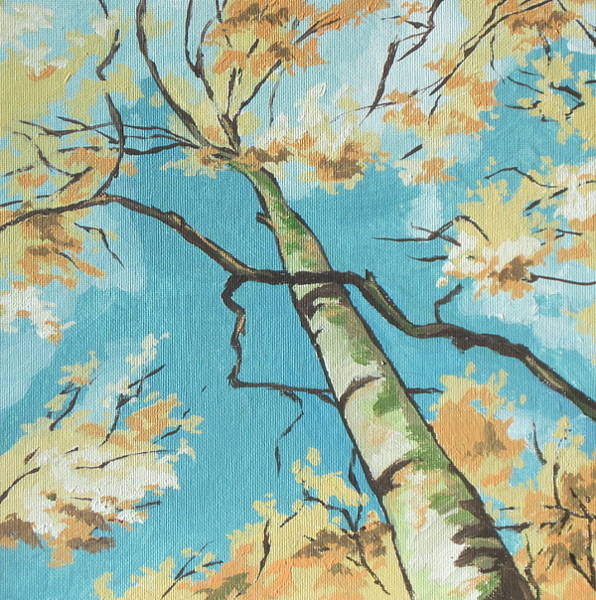Flagstaff Painting - Sky View by Sandy Tracey