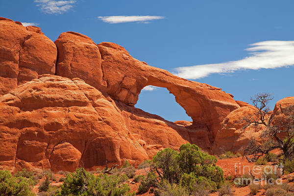 Wall Art - Photograph - Skyline Arch Arches National Park Utah by John Stephens