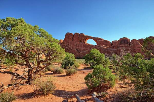 Photograph - Skyline Arch by Kyle Lee