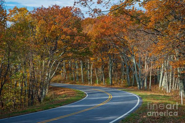 Shenandoah Wall Art - Photograph - Skyline Drive Shenandoah National Park by Michael Ver Sprill