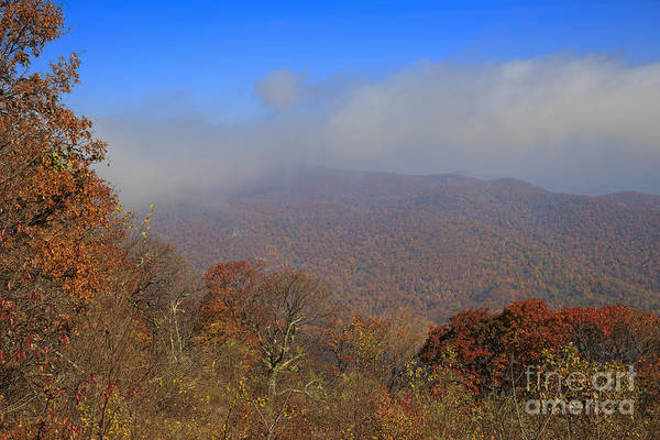 Wall Art - Photograph - Skyline Drive Viewpoint At Thorofare Mountain Overlook by Louise Heusinkveld