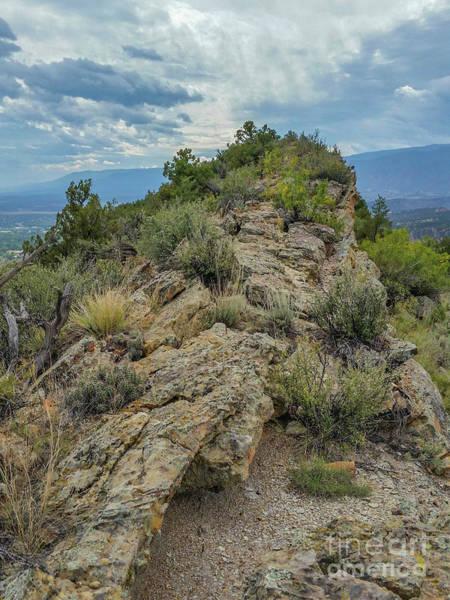 Photograph - Skyline Ridge by Tony Baca
