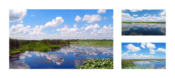 Photograph - Skyscape Reflections Blue Cypress Marsh Florida Collage 1 by Ricardos Creations