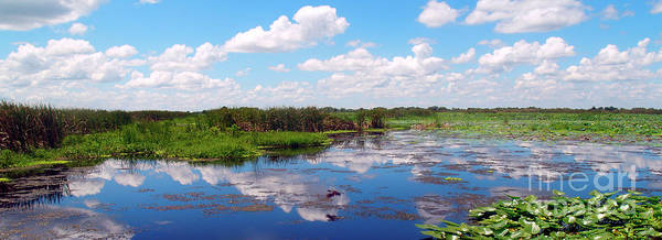 Photograph - Skyscape Reflections Blue Cypress Marsh Near Vero Beach Florida C5 by Ricardos Creations