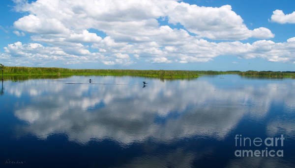 Photograph - Skyscape Reflections Blue Cypress Marsh Conservation Area Florida C1 by Ricardos Creations
