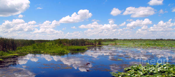 Photograph - Skyscape Reflections Blue Cypress Marsh Conservation Area Florida C3 by Ricardos Creations