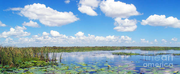 Photograph - Skyscape Reflections Blue Cypress Marsh Conservation Area Florida C4 by Ricardos Creations