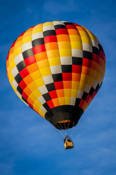 Photograph - Skywalker - Hot Air Balloon by Ron Pate