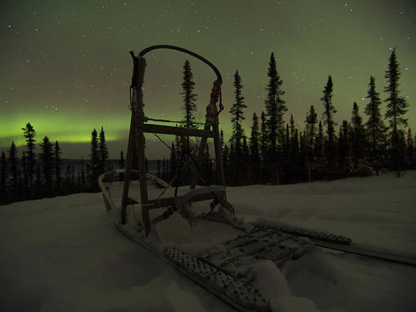 Photograph - Sled Skeleton Aurora by Ian Johnson