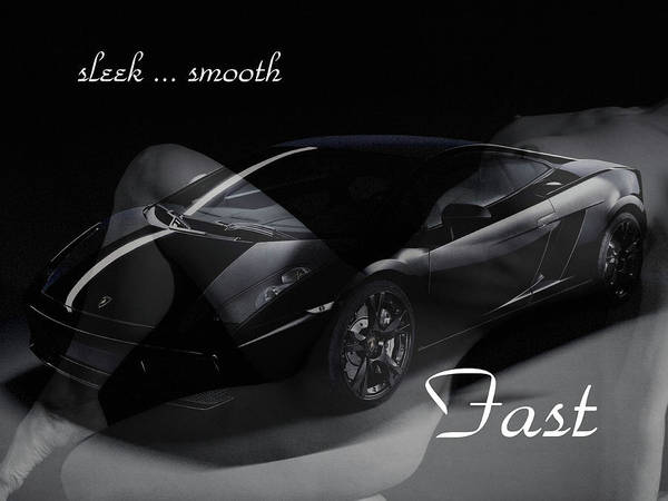 Photograph - Sleek, Smooth, Fast by Bruce Gannon