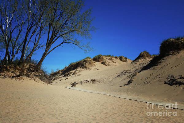 Photograph - Sleeping Bear Dunes Boardwalk by Rachel Cohen